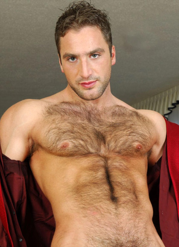 Hairy chested man having sex